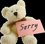 sorrybear